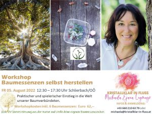 Baumessenzen Workshop