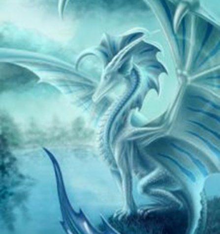 Drachen (C) Adriane Faber